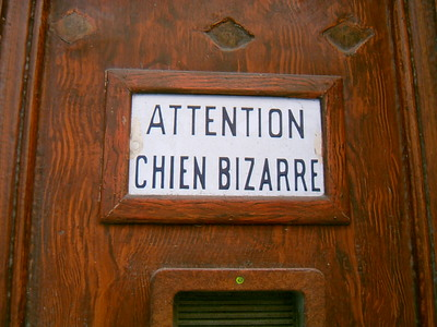 Attention, chien bizarre