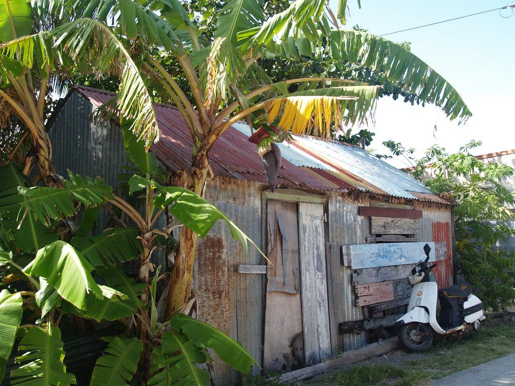 Journ e aux saintes et visite d une bananeraie - La maison du bananier ...